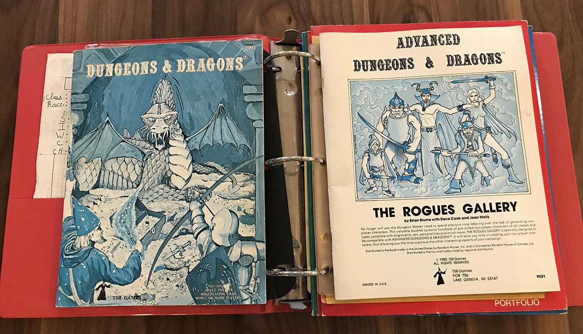 D&D rules and The Rogues Gallery